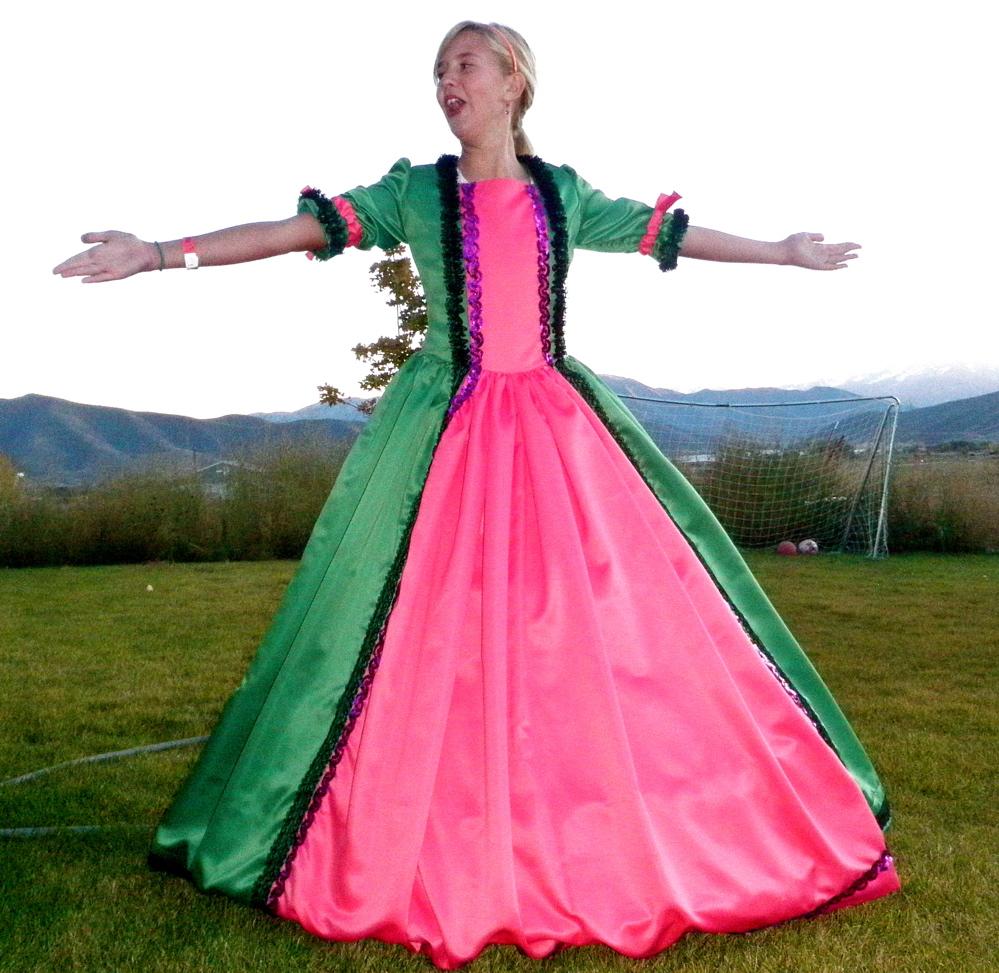 Hoop Skirt Fancy Dress Noelle O Designs